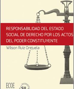 Responsabilidad del Estado social de derecho por los actos del poder constituyente