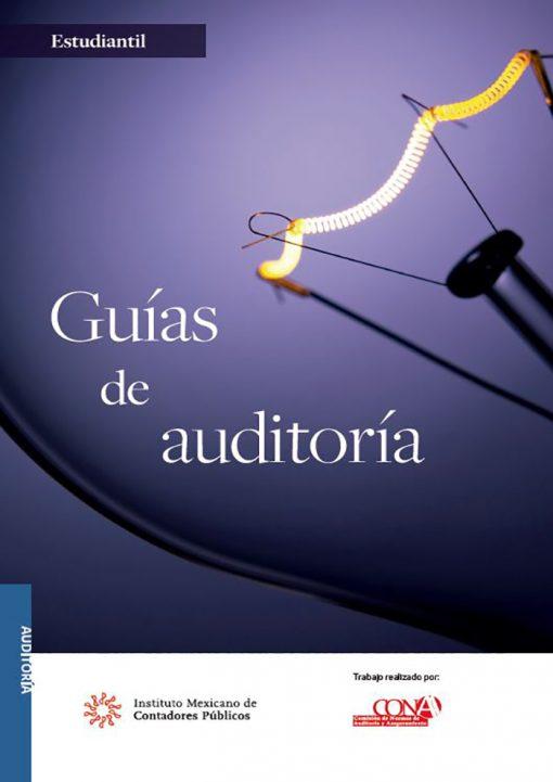 libro-Guias-de-auditoria