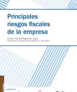 Principales-riesgos-fiscales-de-la-empresa